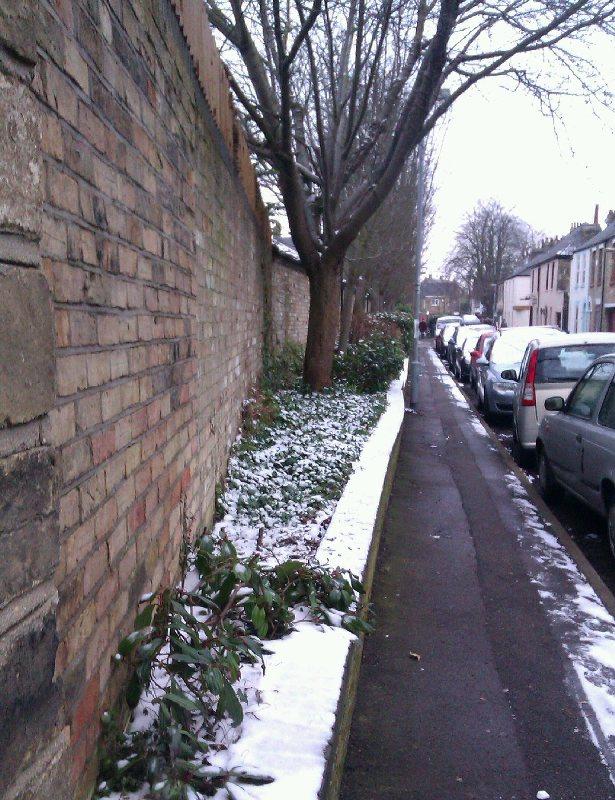 Hooper Street - Simone