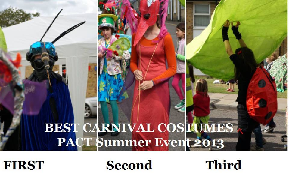 carnival costume winners